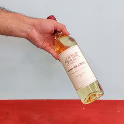 Vinho Alma de Chile Sauvignon Blanc 2019
