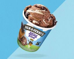 Ben & Jerry's Phish Food 458ml