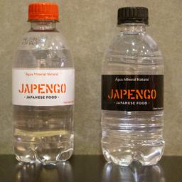 Água Mineral sem Gás 300ml