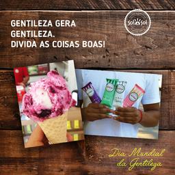 Potinho de sorvete 220ml