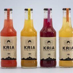 Kombucha Kria- Rosé