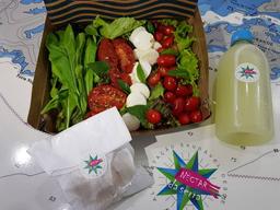 Salada de búfala e tomate seco
