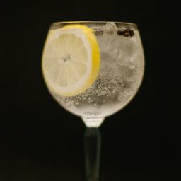 Gin Tônica Gordon's 300ml