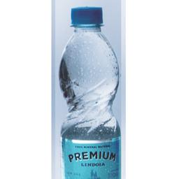 Água Lindoia Premium sem Gás 310ml