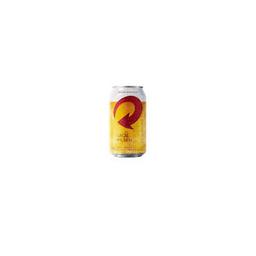 Cerveja Skol - 350 ml