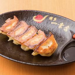 Gyoza de hakata (5 uni) / 博多餃子 (5個)