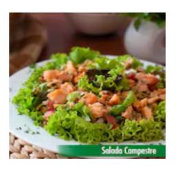 Salada com Salmão (campestre)