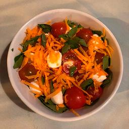 Salada Panamericana