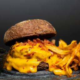 Melted Burger + Fries