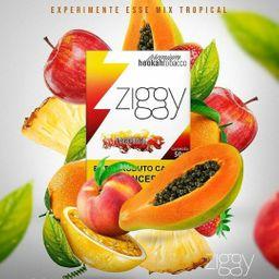 Essência Ziggy Tropical