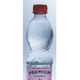 Água Lindoia Premium com Gás 310ml