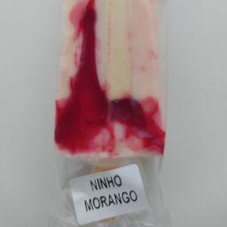 Paleta Ninho com Morango