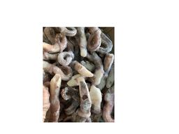 Tentáculos de lula congelado kg