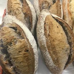 Pão Fermentação Natural Nozes