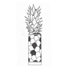Ananás 200ml