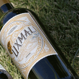 Argentina: Uxmal, Chardonnay