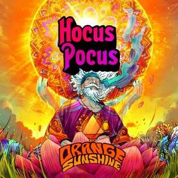 Hocus Pocus Orange Sunshine 500ml