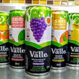 Suco Del Valle Lata 290 ml