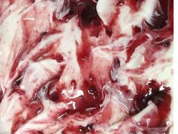 Iogurte Grego com Fruiti Di Bosco Zero Açucar 2L
