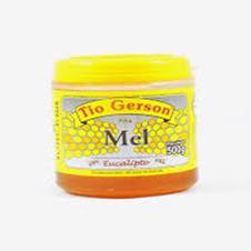 Mel - Eucalipto - 250g - Tio Gerson