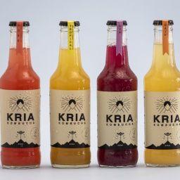 Kombucha Kria- Tropical