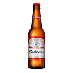 Budweiser Long Neck