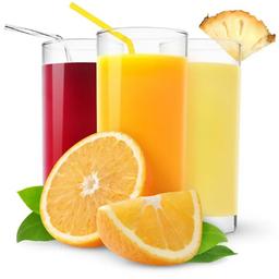 Suco de Frutas 500 ml