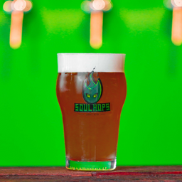 Red Ale Knight - Red ale Leuven  1L