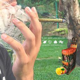 Blunt Vegana Lion Rolling Com Mango