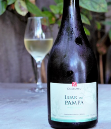Vinho Branco Guatambu Luar do Pampa