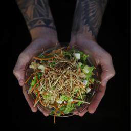 Salada S