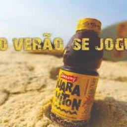 Guaraviton 500ml Garrafa 500 ml