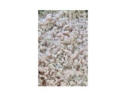 Camarão molho kg congelado