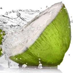 Garrafa água de coco 500 ml