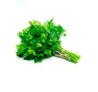 Cheiro Verde M. Verdes Und