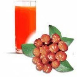 Suco de Pitanga 500ml
