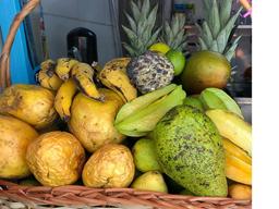 INCOMPLETO SEM ML - Vitamina de Frutas