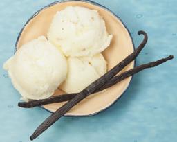 Gelato Vanilla 500ml