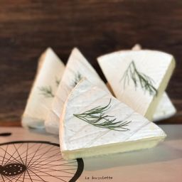 Queijo Brie - 100g
