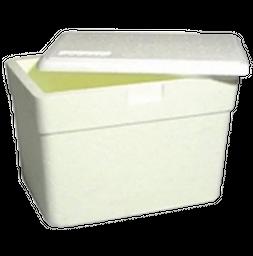 Caixa Térmica Styrocorte 21 L