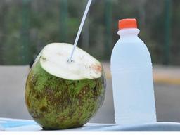 Água de coco 300ml