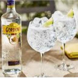 Gordon´s gin com taça 750ml-43% volume alcoólico