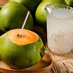 Agua de Coco Natural 300ml