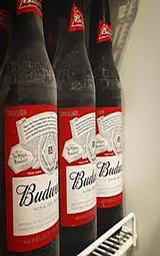 Budweiser - 600ml