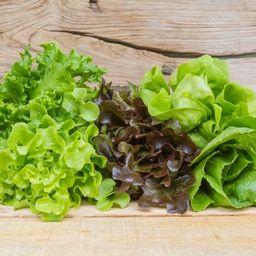 Salada Max Folhas + Molho