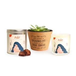 Found It! Kit Meu Maior Presente: Lata Brownie + Vela +Suculenta