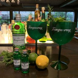 Gin Tônica Dupla e 2 Taças Tanqueray