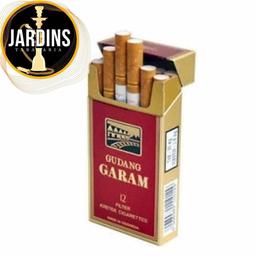 Gudang Garam / Professional Box / Importado