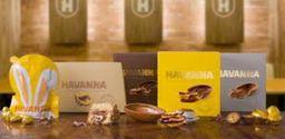 Havanna - Pamplona