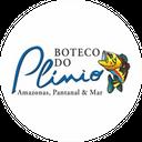 Boteco do Plinio background
